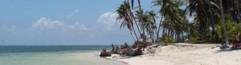 cropped-beach2x.jpg